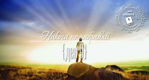 liakolekcia_picture9