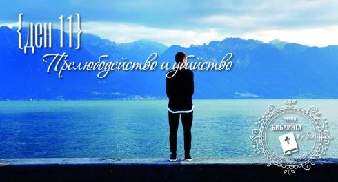 liakolekcia_picture11