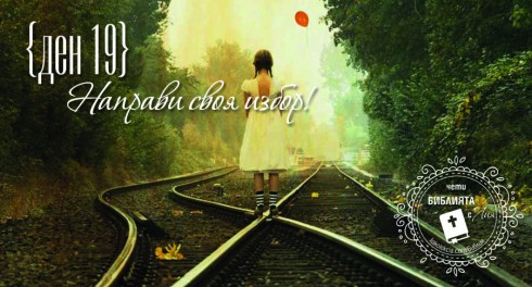 liakolekcia_picture19