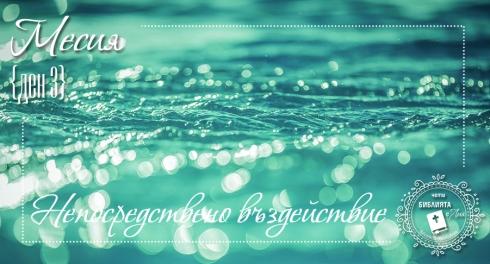 liakolekcia_picture13