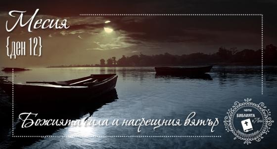 liakolekcia_picture_22